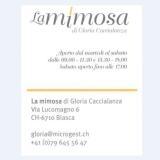Lamimona 160x160